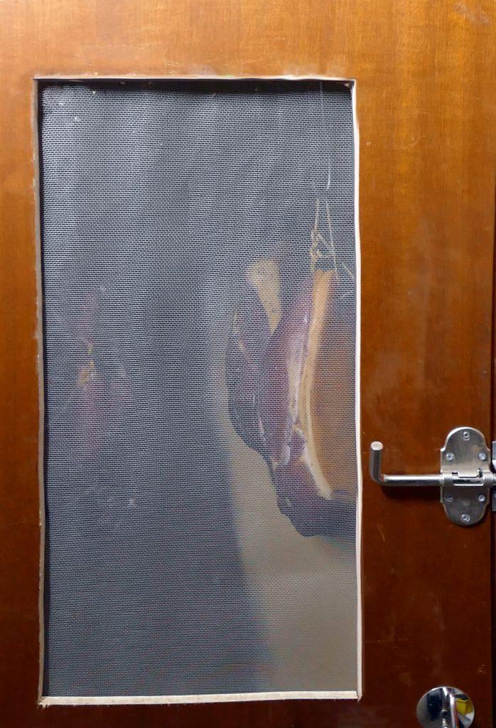 Umgebauter Trockenschrank ©Kaktusmichel.de