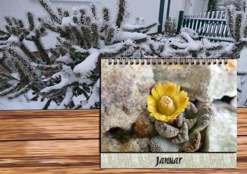 Pflege Januar